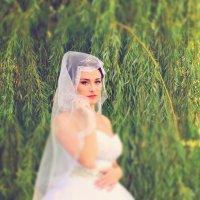 Прекрасная невеста :: Наталья Базанова
