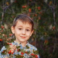 Красные капли лета... :: Ольга Егорова