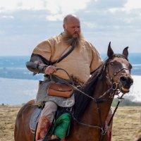 Лошади тоже любят позировать. :: Владимир Нефедов