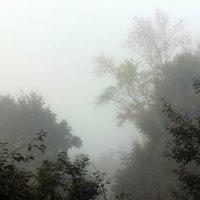 Тамбовский  туман . :: Виталий Селиванов