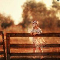 Осень в деревне :: Маргарита