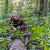 В дремучем лесу :: Владимир Деньгуб