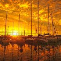 В апельсиновом закате! :: Натали Пам