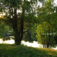 Еще теплый вечер на пруду :: Андрей Лукьянов
