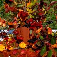 Осень танцует блюз :: Нина северянка