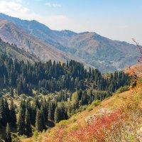 Сентябрь в горах :: Владимир Скляренко