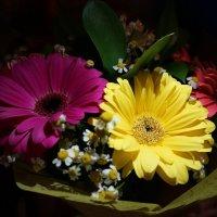 Flowers :: Анастасия Макарова