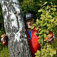 Я из леса вышел... :: Михаил Столяров