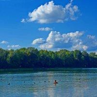 Солнечный сентябрьский день... :: Galina Dzubina