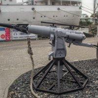 Пушка специальная. Чтобы китов убивать. :: Sergey Polovnikov