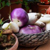 Беленький баклажанчик глазам не верит, что грибы на выставке. :: Татьяна Помогалова