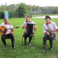 Трио: домра, гармонь, балалайка :: Дмитрий Никитин