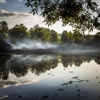 туманная рекой :: Станислава Боо