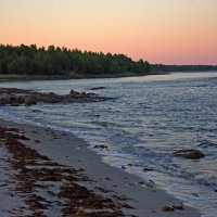 Побережье Белого моря :: Анжела Пасечник