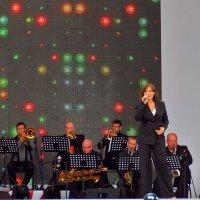 Концерт в Парке победы :: Yuriy V
