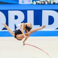 Кубок мира по художественной гимнастики :: Екатерина Краева