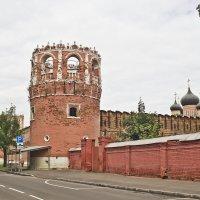 Донской монастырь :: Олег