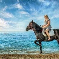Конь Магнат :: Андрей Володин