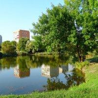 Городской пейзаж в сентябре... :: Тамара (st.tamara)