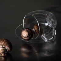 Немного о грибах :: mrigor59 Седловский