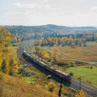 Осенние маршруты :: Владимир Гришин