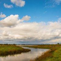Река Ташеба. :: юрий Амосов