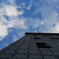 Небо рядом :: Вероника