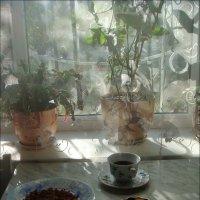 Завтрак на скорую руку :: Нина Корешкова