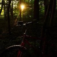 Солнце и велосипед :: Alexander Andronik
