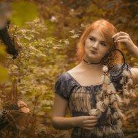 В осеннем лесу... :: Татьяна Шторм