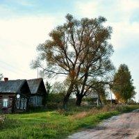 Домик в деревне :: АЛЕКСАНДР СУВОРОВ