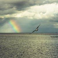 Радуга над Финским заливом :: Олег Денисов
