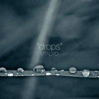 drops :: Vitaliy Dankov