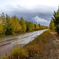 Осенняя дорога :: Дмитрий Сиялов
