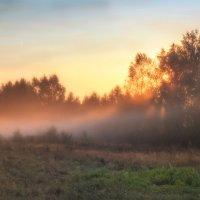 Утро туманное :: Сергей Цветков