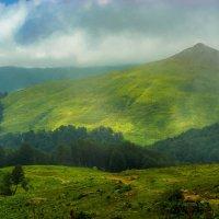 Альпийские луга, Абхазия :: Юрий Захаров