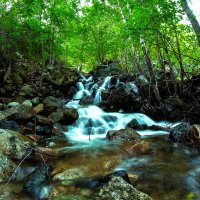 Водопад в долине Чулышман :: Людмила Ильина