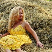 На сене :: Nataliya Oleinik