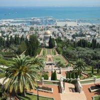 Израиль, Хайфа. Бахайские сады(2) :: Александр Степовой