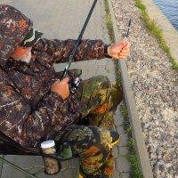 Чтобы отпустить рыбку, ее надо сначала поймать :: Андрей Лукьянов