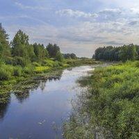 Река Войнинга :: Сергей Цветков