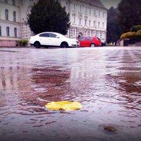 В Советске дождь... :: Natalisa Sokolets