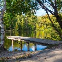 Осень идет... :: Роман Царев