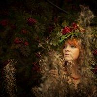 Осень :: Лев Кирьянов