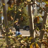Наступила осень :: Михаил Почкалов-Семченков