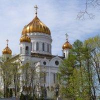 Храм Христа Спасителя (Осень) :: Алексей Ефимов