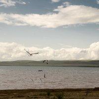 Озеро Беле :: Виктория Большагина