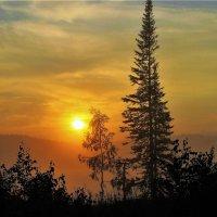 В утренней хмари :: Сергей Чиняев