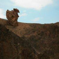 каньон Чарын. :: Murat Bukaev