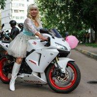 свадьба :: Алексей Шумков